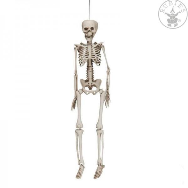 Skelett 40cm