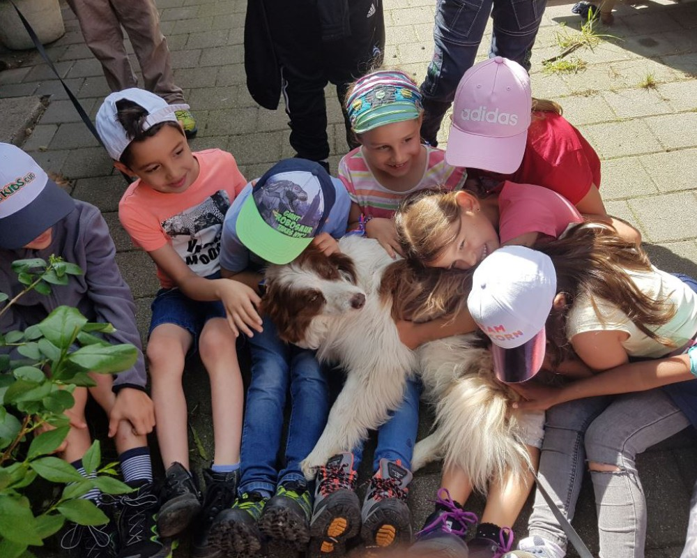 Kinder-mit-Hund